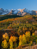 Dallas Divide in Autumn. The Dallas Divide is a Colorado icon, well known for its vivid fall colors produced by scrub oak and aspens royalty free stock images