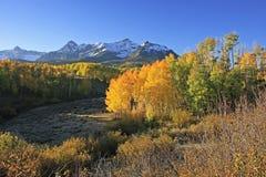 Dallas Divide, bosque del Estado de Uncompahgre, Colorado fotografía de archivo libre de regalías
