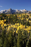 Dallas Divide, foresta nazionale di Uncompahgre, Colorado Fotografie Stock