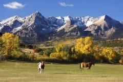 Dallas Divide, het Nationale Bos van Uncompahgre, Colorado royalty-vrije stock afbeelding