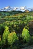 Dallas Divide, het Nationale Bos van Uncompahgre, Colorado royalty-vrije stock fotografie