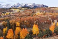 Dallas Divide, réserve forestière d'Uncompahgre, le Colorado image libre de droits