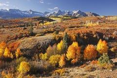 Dallas Divide, réserve forestière d'Uncompahgre, le Colorado Images stock