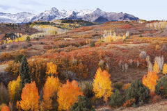 Dallas Divide, Uncompahgre National Forest, Colorado. USA royalty free stock image
