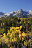 Dallas Divide, Uncompahgre National Forest, Colorado Royalty Free Stock Images