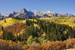 Dallas Divide, Uncompahgre National Forest, Colorado Royalty Free Stock Photos
