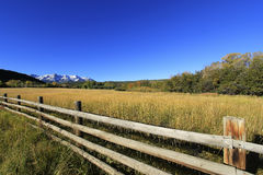 Dallas Divide, Uncompahgre National Forest, Colorado Royalty Free Stock Photo