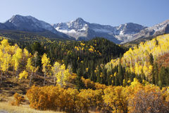 Dallas Divide, Uncompahgre-staatlicher Wald, Colorado Lizenzfreies Stockbild