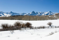 Dallas Divide in Winter. Snowy mountain scene in winter with snow, a fence, bare woods, and peaks Stock Photo
