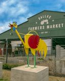 Dallas Farmers Market with whimsical rooster, one of six metal sculptures, Dallas, Texas. Pictured is a whimsical rooster, one of six metal sculptures in front royalty free stock photography