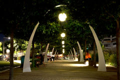 Dallas Klyde Warren Park night scenes Royalty Free Stock Photos