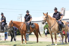 Dallas Mounted Police. Dallas Police lined the street to control the crowd that was at Love Field airport to welcome home the NBA champions Dallas Mavericks Stock Photo