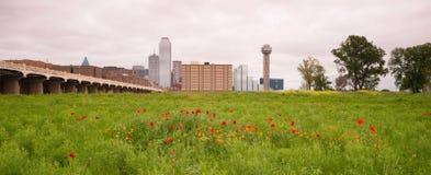 Dallas Texas City Skyline Metro Downtown la rivière Trinity Wildflowe photos stock
