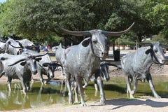 Dallas Travel imagens de stock