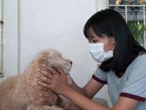 Dalle allergie dell'animale domestico Fotografia Stock Libera da Diritti