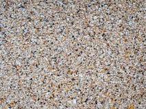 Dalle légère de chaux avec des marques de coquille Texture de roche de Shell Fond en pierre normal photos stock