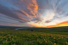 Dalles山大农场, Wa 免版税图库摄影