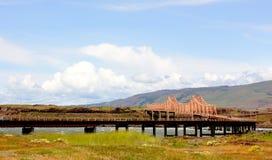 Dalles桥梁 免版税库存图片