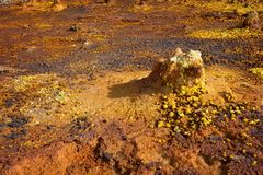 Dallol, Danakil消沉,埃塞俄比亚 地球的最热的地方 库存图片