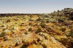 Dallol Danakil fördjupning, Etiopien Det varmmaste stället på jord Arkivbild