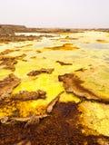 Dallol i den Danakil fördjupningen, Etiopien Royaltyfria Foton