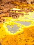 Dallol i den Danakil fördjupningen, Etiopien Royaltyfri Fotografi