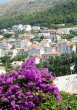 Dalmatia Dubrovnik i Kroatien Arkivbild
