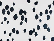 Dalmatian. Imagem de Stock Royalty Free