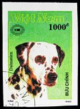 Dalmatian (Canis lupus familiaris), International stamp exhibition New Zealand '90 (Dogs) serie, circa 1990. MOSCOW, RUSSIA - NOVEMBER 10, 2018: A stamp printed stock photo