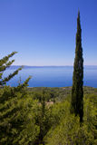 Dalmatian coast Royalty Free Stock Photo