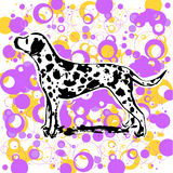 Dalmatian design vector. Abstract dalmatian design illustration vector Royalty Free Stock Images