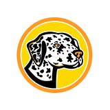 Dalmatian Dog Mascot Stock Images