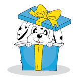 Dalmatian dog out of a gift box Stock Photo