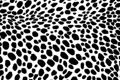 Dalmatian dog seamless pattern. Or cow skin texture. Stock Images