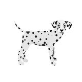 Dalmatian dog vector isolated on a white background. Dalmatian dog vector cute isolated on a white background Royalty Free Stock Image