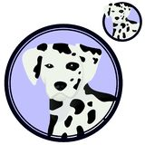 Dalmatian dog head in circle stock images