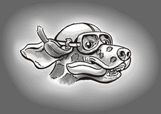 dalmatian hundchaufför Royaltyfri Bild