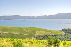 Dalmatian kust i sommar Royaltyfria Foton