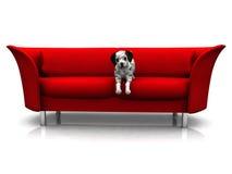 Dalmatian puppy in sofa. A cute dalmatian puppy in a red sofa Stock Photos