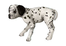 Dalmatian Puppy on White Royalty Free Stock Photography