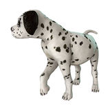 Dalmatian Puppy on White Royalty Free Stock Image
