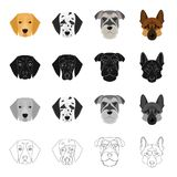 Dalmatian, terrier, shepherd and other web icon in cartoon style.Dog, animal, home, icons in set collection. Royalty Free Stock Photos