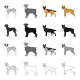 Dalmatian, terrier, shepherd, and other web icon in cartoon style.Dog, pet, domestic, icons in set collection.