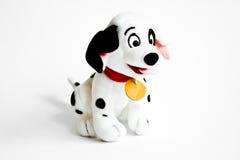 Dalmatian toy dog. Photo of a cute dalmatian dog Royalty Free Stock Photo