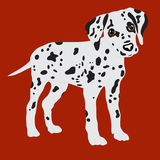 Dalmatians, cute puppy, sad. Vector Illustration Portrait of Dalmatian Puppy. Dog . Royalty Free Stock Image