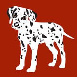 Dalmatians, cute puppy, sad. Vector Illustration Portrait of Dalmatian Puppy. Dog isolated. Royalty Free Stock Images