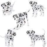 Dalmatians, lindo, tristes Ilustración del vector Retrato del perrito dálmata Perro aislado Imagenes de archivo