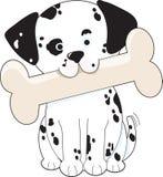 Dalmatiner mit dem Knochen Stockfotos