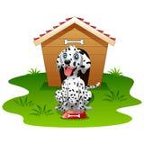 Dalmatinischer Hundehölzernes Haus lokalisiert Lizenzfreies Stockfoto