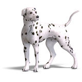 Dalmation Dog. 3D rendering with clipping path and shadow over white Royalty Free Stock Images